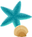 Starfish in the Sea at the Pediatric Dentist and Orthodontic Office in Tampa and Wesley Chapel, FL